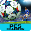 PES COLLECTION (PES MANAGER) 1.1.8