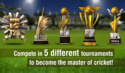 Screenshot 4 of World Cricket Championship 2 2.7.5